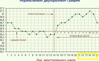 Основна температура по време на бременност и планиране