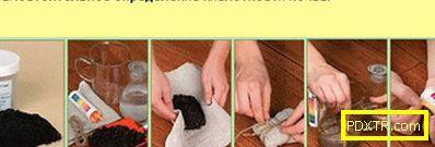 Cyclamen: грижа у дома (снимка). отглеждане, размножаване,