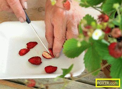 Как да гарантираме отглеждането на ягоди от семена: тайни.