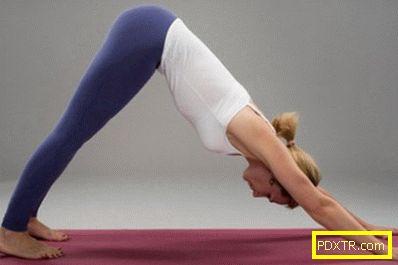 Йога упражнения за отслабване - начинаещи: описание на