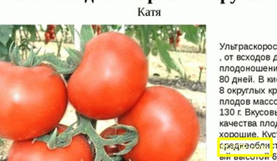 Най-добрите сортове домати за открито място -