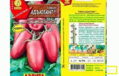 Преглед на най-добрите сортове домати за открито място в