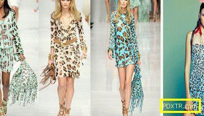 С какво да носиш леопардова рокля? стилни изображения