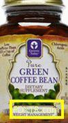 Зелено кафе и хлорогенна киселина - купувайте и отслабвайте