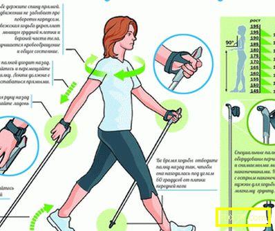 Техниката на скандинавското ходене - как да вървим правилно