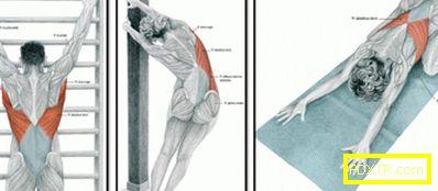 След тренировка, възстановяване на мускулите