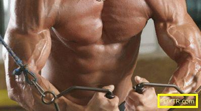 Комплект упражнения за увеличаване на гръбначните мускули в